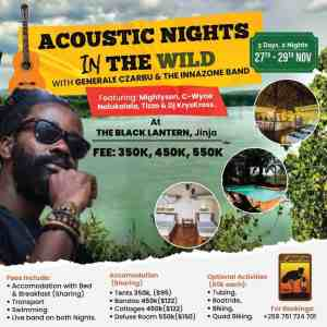 Acoustic Nights In The Wild