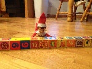 elf shelf autism