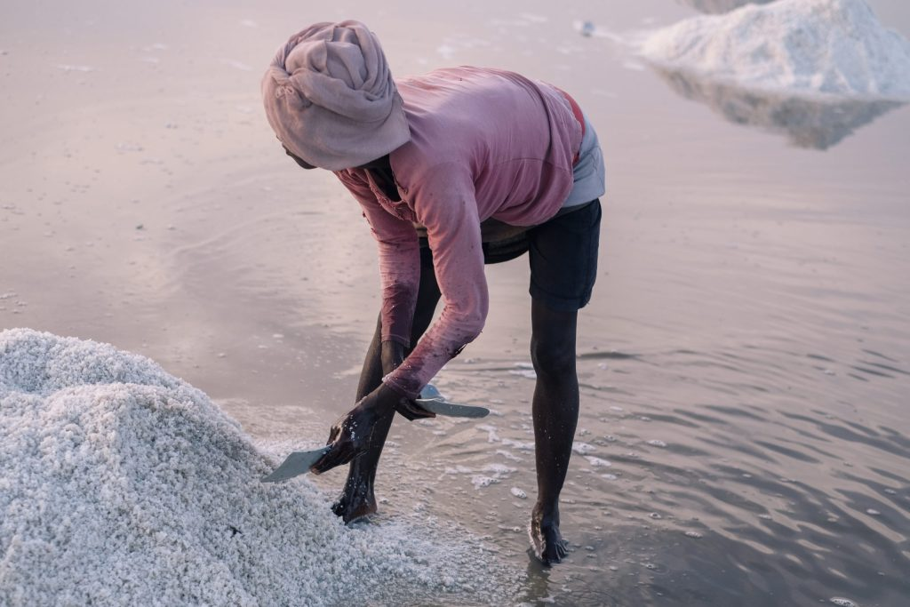 A local female worker collects salt at Songor Salt Lagoon in Eastern Ghana