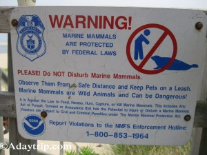 The warning sign at Chatham Lighthouse Beach