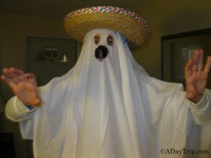 Mexican ghost
