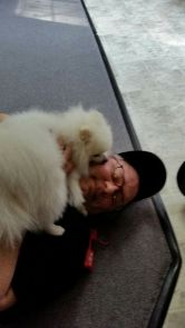 Kimchi kissing Dad