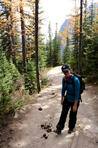 Amanda was a victim of some horse poop along are trail to Lake Agnes Tea House in Banff National Park.