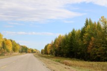 Fall colours in Manitoba on our way to The Pas.