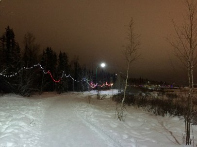 An evening stroll along the colourfully lit Frame Lake Trail