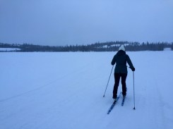 Cross country skiing on Madeline Lake