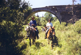 horse riding in auvergne