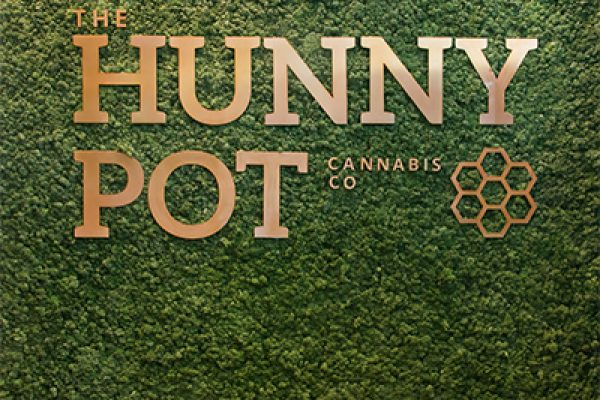 Hunny Pot Cannabis Retail Store Display