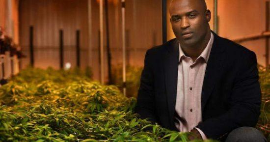 Ricky Williams Cannabis