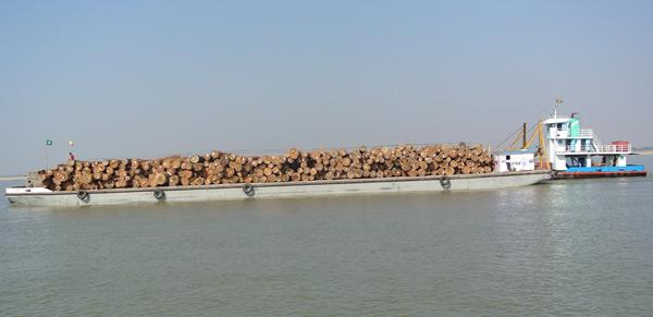 Teak barge on the Ayeyarwady River