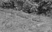 Remains of a ground: Third Lanark, Cathkin Park