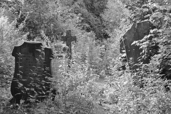 ludlow-lost-cemetery