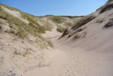 Wandering the dunes at Sandwood Bay
