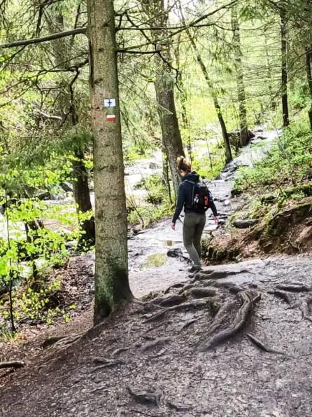 wandeling Vallée de la Hoëgne