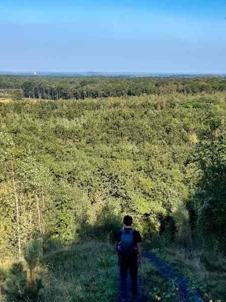 Wandelen in het Bos van Wallers