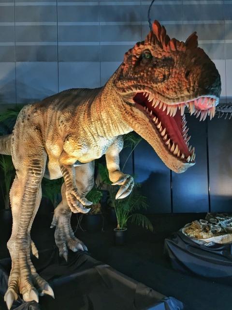 福井県立恐竜博物館の夏休みの混雑状況!館内の混み具合や対策は?
