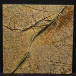 Rain Forest Gold Leathered 12x12 Lot 41706 CU