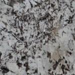 Delicatus White 3cm Lot 314316 CU