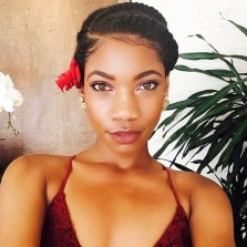 Cool Natural Hairstyles For African American Women31