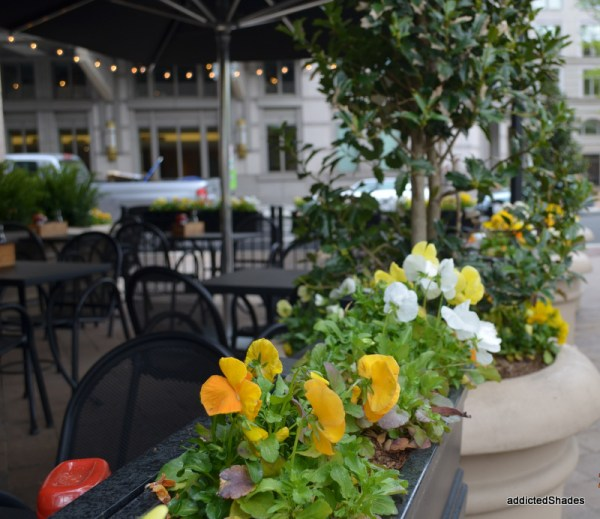 Pretty flowers outside every cafe!