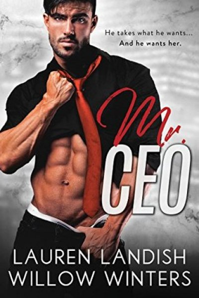 Quickie Review-Mr. CEO by Lauren Landish and Willow Winters