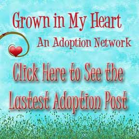 see-adoption-blog-post