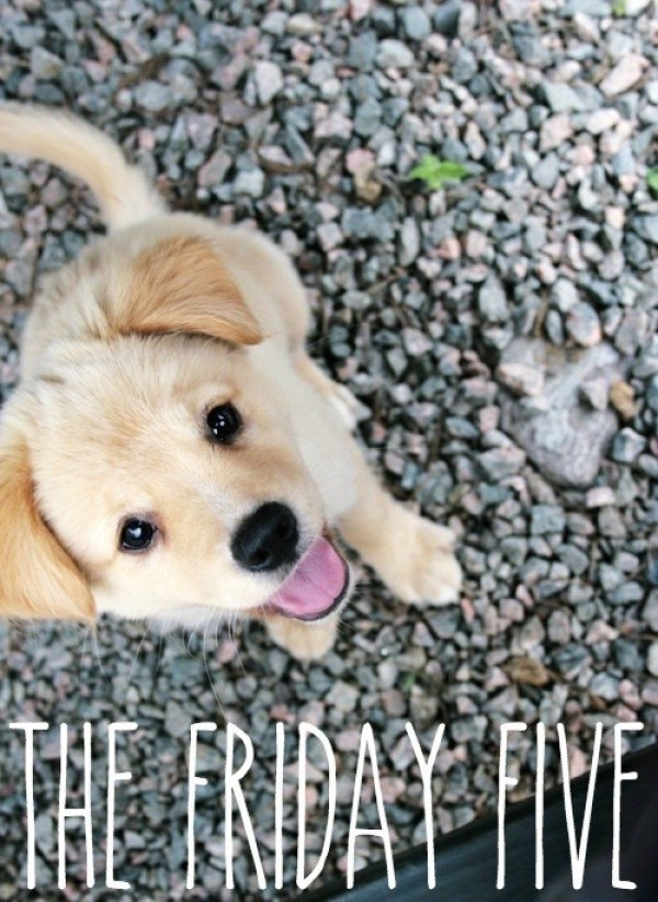 friday five (1)