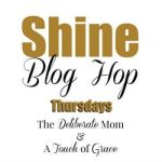 Shine Blog Hop #71