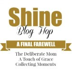 The Shine Blog Hop – Farewell