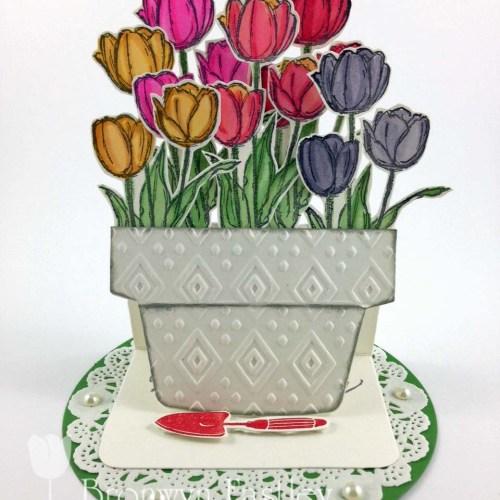 Tulip g