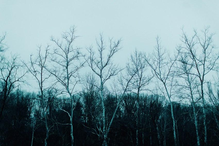Ohio-best-engagement-photographers-cuyahoga-valley-national-park-001