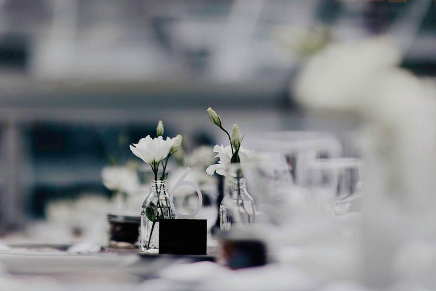lake-erie-airbnb-backyard-wedding-cleveland-ohio-024