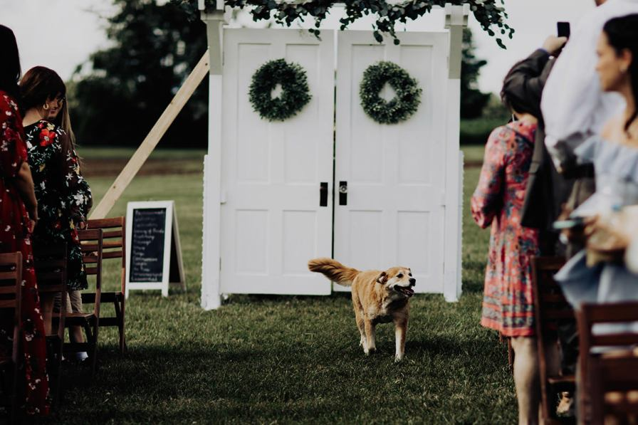cleveland-backyard-wedding-best-cleveland-wedding-photographer-addison-jones-photography-0047.jpg
