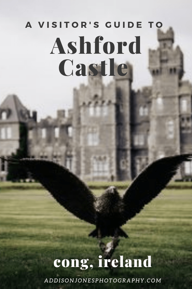 a visitor's guide to ashford castle, bird swooping in front of ashford castle