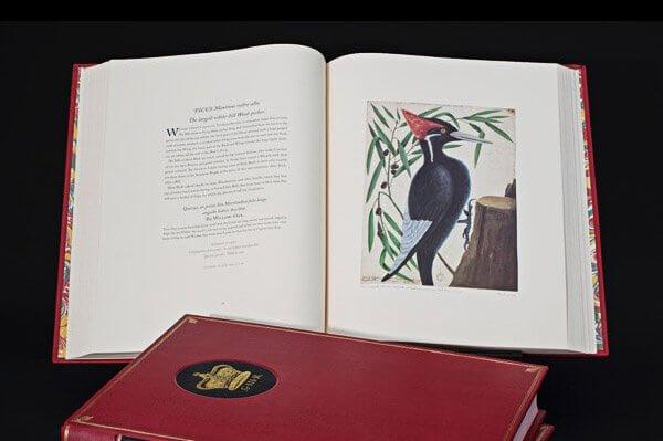 catesbys book