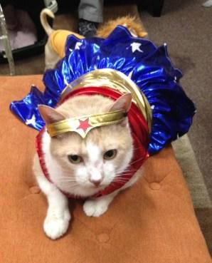 Gus as Wonder Woman