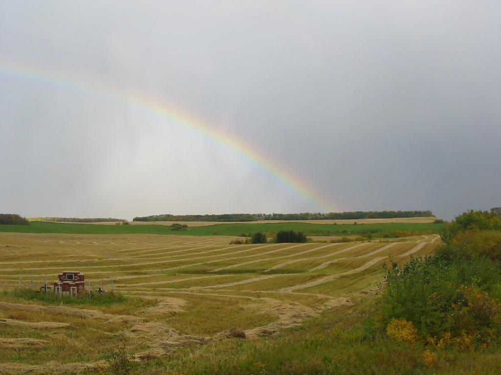 Rainbow @ Harvest