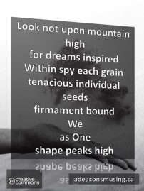 Peaks High