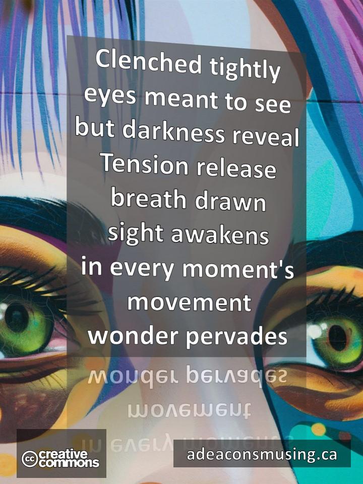 Wonder Pervades