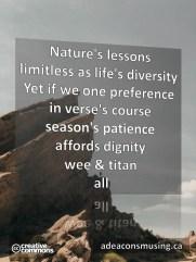 Titan All