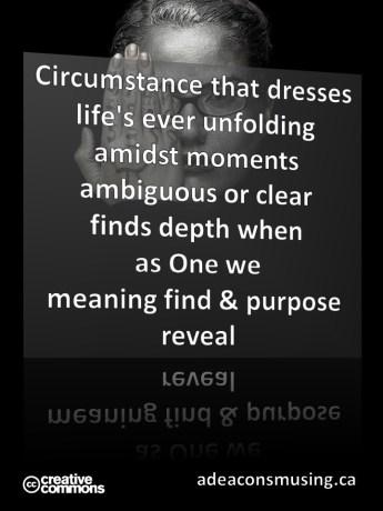Purpose Reveal