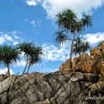 Bintan Lagoon Resort {Deetour}