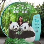 River Safari: Pandas in Singapore