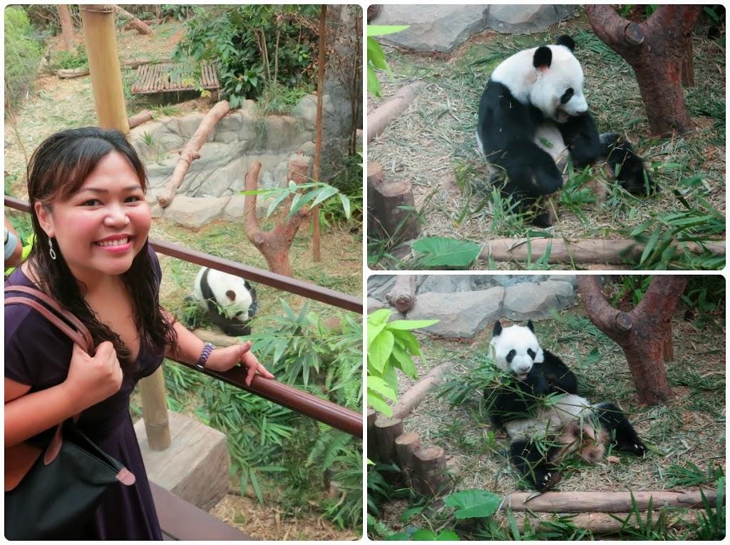 pandas-collage