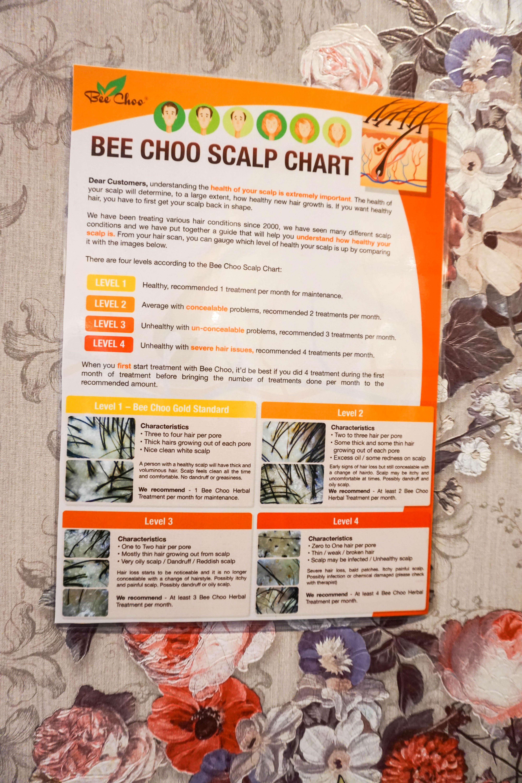 Eliminate Dandruff with Bee Choo Origin Ladies - A Deecoded Life