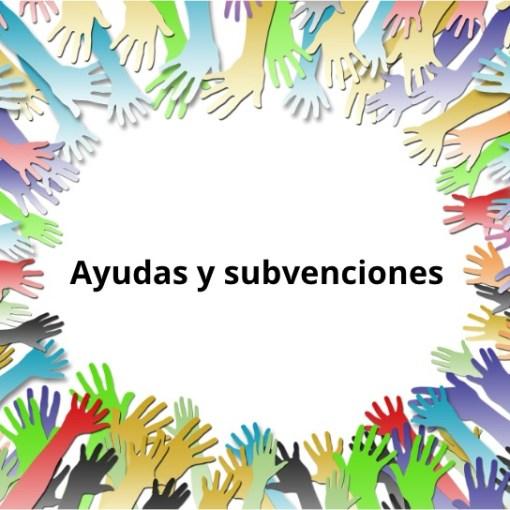 Imagen decorativa con el texto: Ayudas y Subvenciones