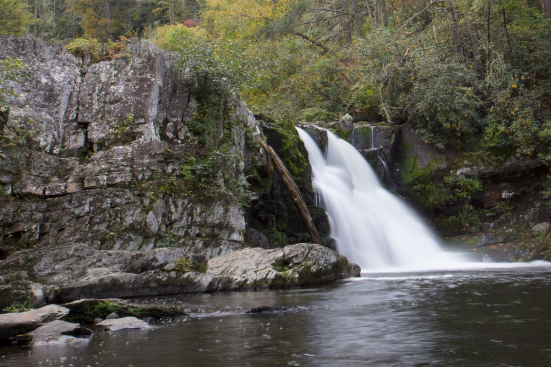 Abrams Falls Trail, Kissing Stone, Great Smoky Mountain National Park, TN