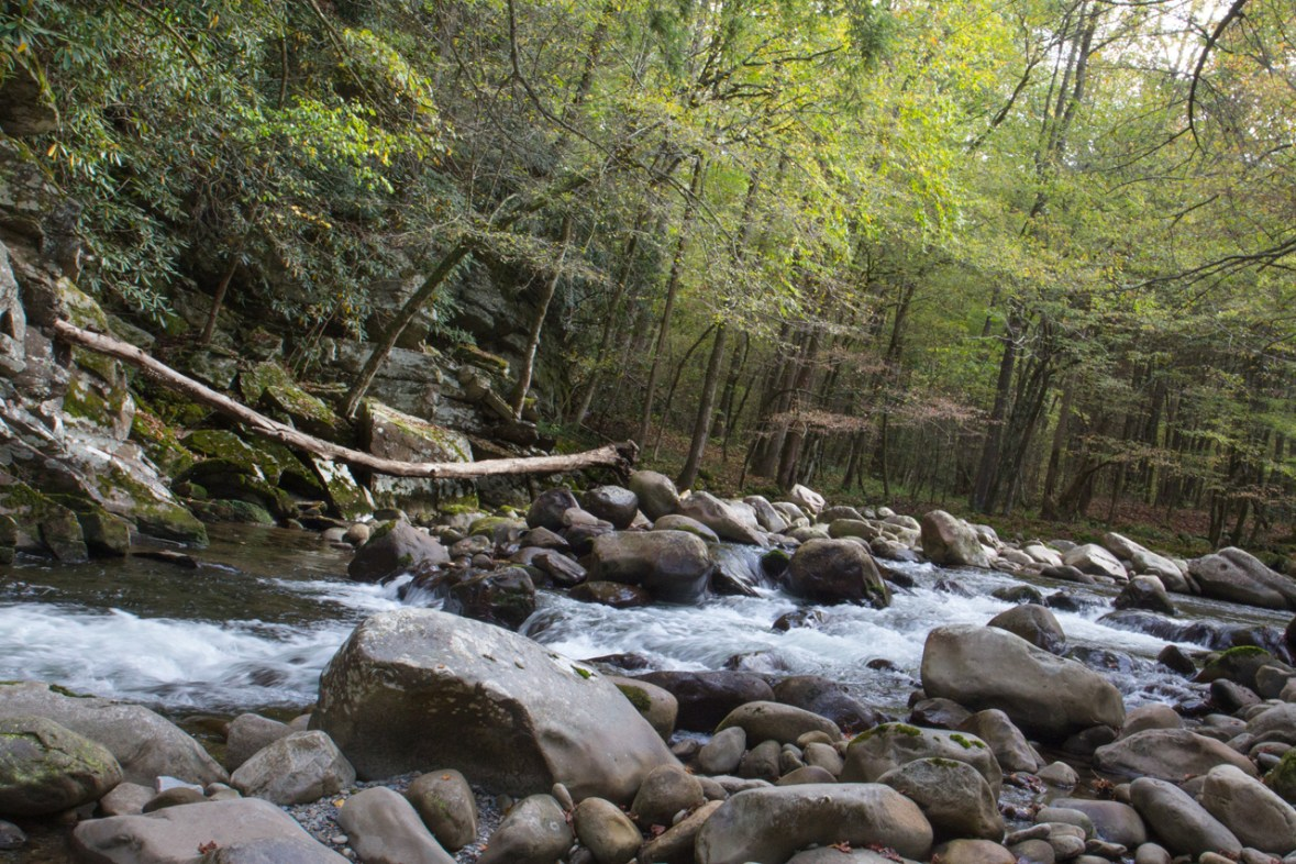 Little Pigeon River, Great Smoky Mountain National Park, Greenbrier, TN