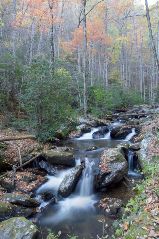 Stream, Anna Ruby Falls, Helena, GA © Adel Alamo 2014
