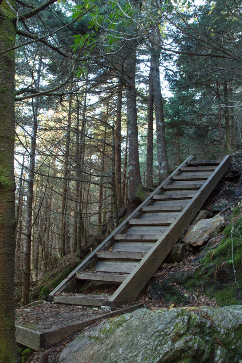 Old Mitchell Trail, Mount Mitchell State Park, Pisgah National Forest, Blue Ridge Parkway, NC © Adel Alamo 2015